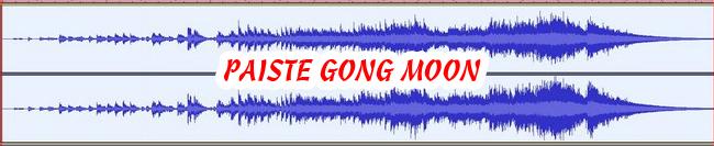 8 PAISTE GONG MOON 432 Hz